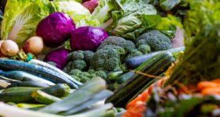 Pourquoi privilégier les aliments bio?